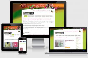 a symphonie des ideees- Maintenance site internet